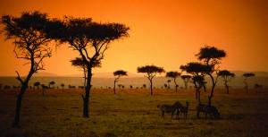 KEGEN_Kenya_sunset