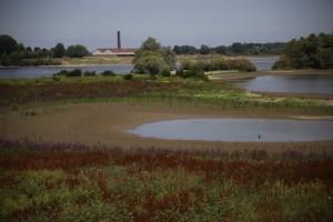 Siccità in Olanda: troppo sole