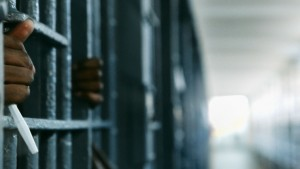 American Jail - Nederlands Film Festival - Prigione